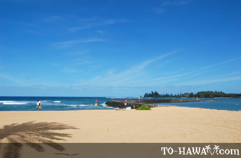 Sunny day on North Shore Oahu