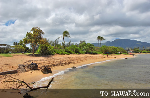 Beautiful Hale'iwa shoreline