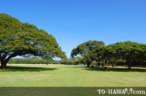 Large beach park on Oahu's north coast