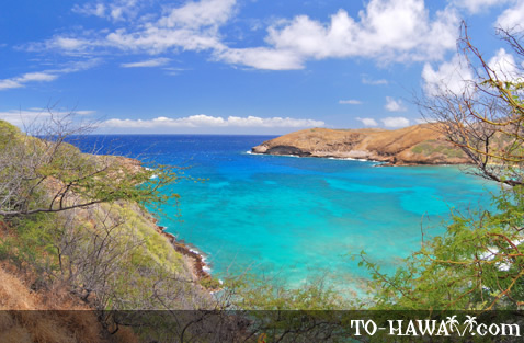 Azure blue water at Hanauma Bay