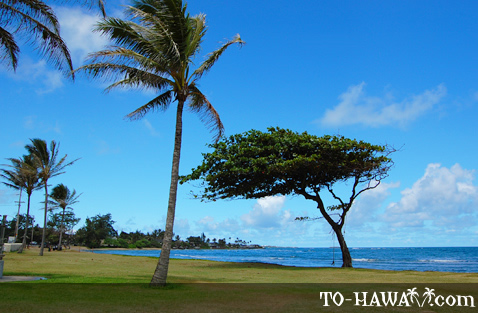 Hau'ula beachfront park