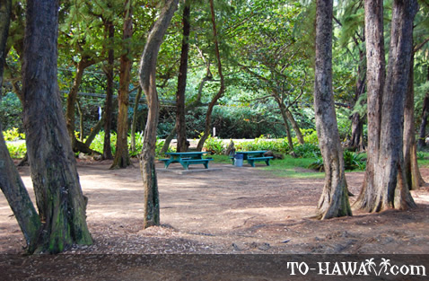 Kahana picnic area with plenty of shade
