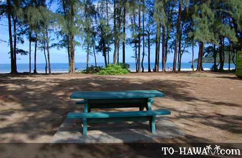 Picnic table with ocean view