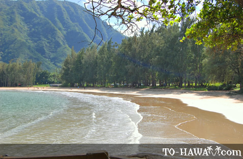 Scenic bay on Oahu