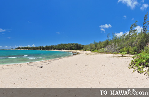 Long white sand beach on Oahu