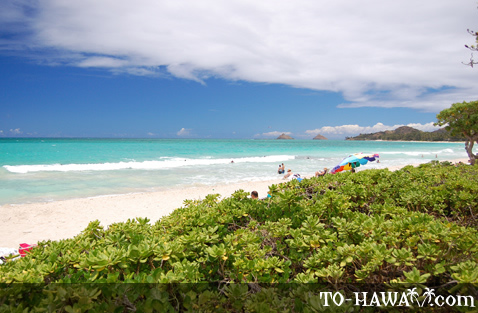 White-sand beach in Kailua