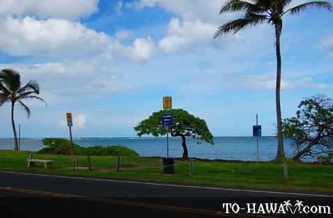 View from Kamehameha Hwy