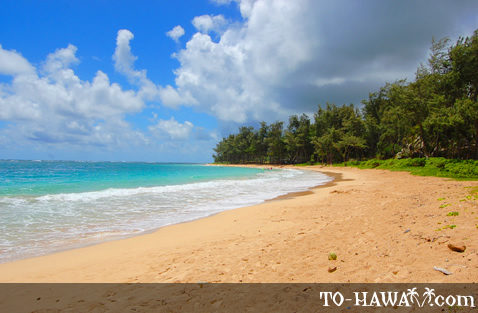 Beach in Hau'ula