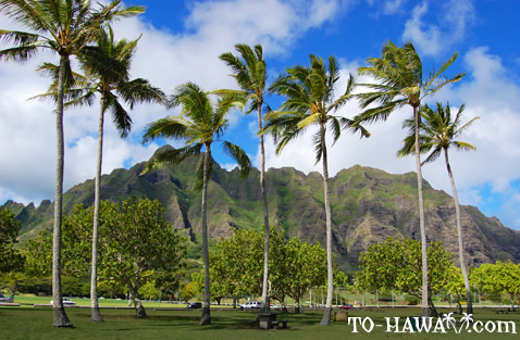 Beautiful Oahu park