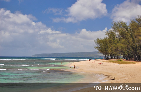 Oahu north shore beach