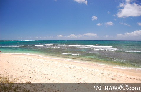 Sandy beach on Oahu's north shore