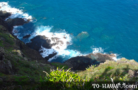 Makapu'u Lighthouse hike view