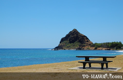 Oceanfront picnic table at Mauna Lahilahi