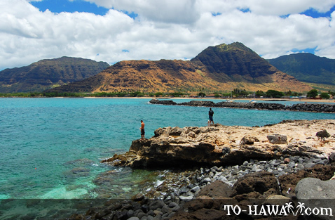 Pokai bay beach park oahu for Nearest fishing spot