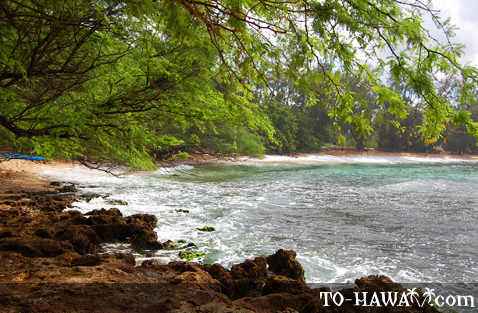 Beach in Haleiwa