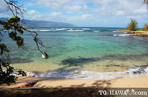 Popular surfing beach in Haleiwa