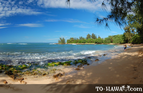 Pua'ena Point Beach Park