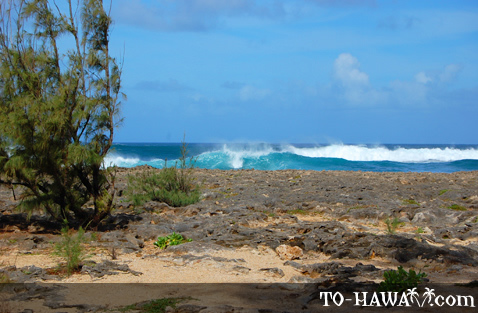 Waves breaking on Pua'ena Point