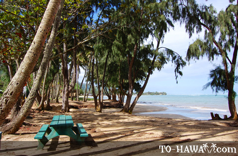 Hauula Beach Park Camping The Best Beaches In World