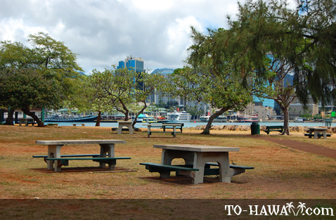 Picnic area with Honolulu city view