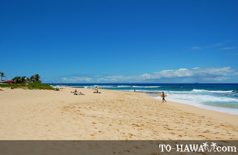 Sandy Beach on Oahu