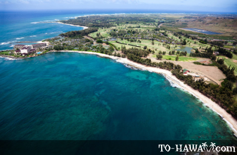 Aerial view of Turtle Bay