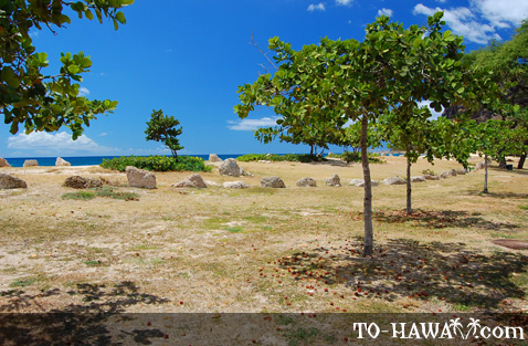 Remains of an ancient Hawaiian settlement