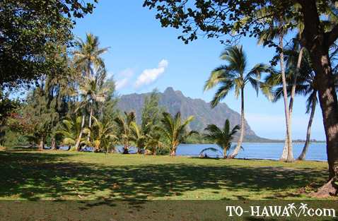 View to majestic Ko'olau Mountains