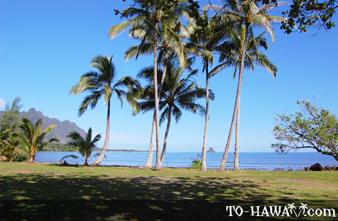 Scenic beach park on Oahu