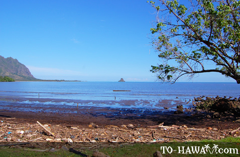 View to Chinaman's Hat