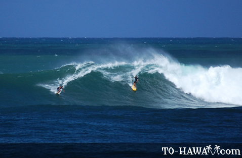 Surfing at Waimea Bay