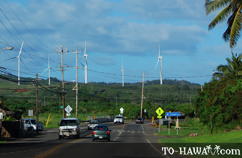 Driving in Kahuku