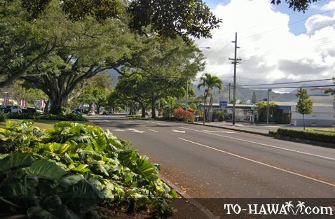 Kailua Road on Oahu