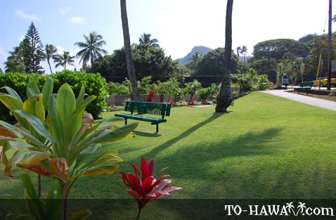 Small park in Lanikai