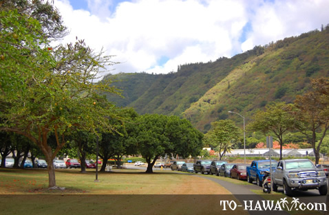 Scenic Manoa view