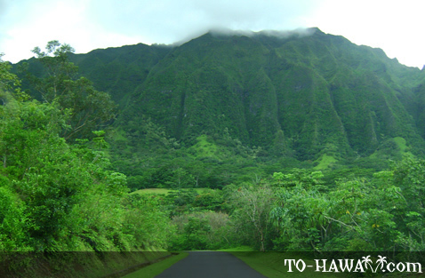 Another view to Ko'olau Mountains