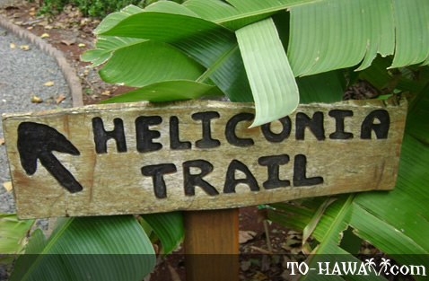 Heliconia Trail