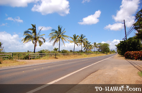 Not much traffic for an Oahu road