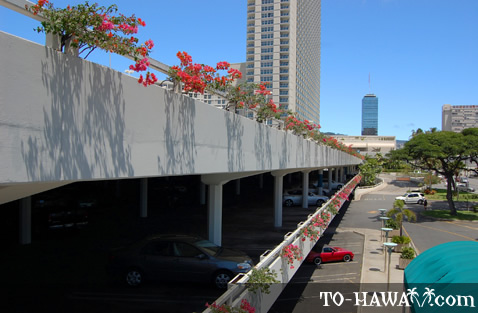 Honolulu city view from the parking lot