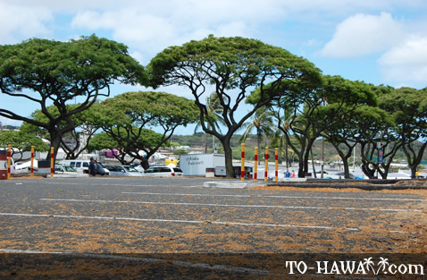 Aloha Stadium parking lot