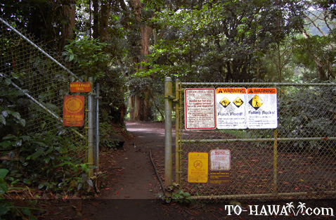 Entrance to Manoa Falls