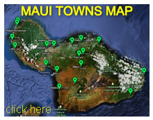Maui Cities Map
